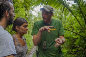 Dschungel Ranger erklärt