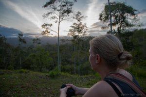 Natur spüren ist leicht im Regenwald
