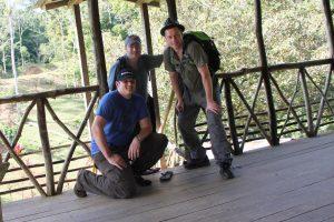 Mit Cashback Bäume in Costa Rica pflanzen
